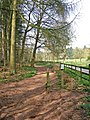 Start of Horse Route, by Blakeshall car park, Kingsford Forest Park - geograph.org.uk - 886475.jpg