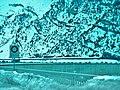 Staumauer, Lago di Livigno - panoramio.jpg
