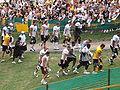 Steelerstrainingcamp.jpg
