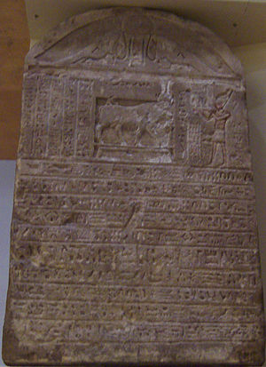 Buchis - A stele commemorating the burial of a Bakha bearing the iconography of Hathor