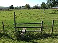 Stile at Thorpe Farm, Skendleby - geograph.org.uk - 554394.jpg