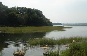 English: Bay of Stony Brook Harbor in Stony Br...