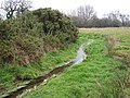 Stream meandering through pasture - geograph.org.uk - 1113406.jpg