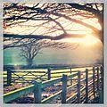 Sunrise - panoramio (92).jpg