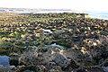 Sunset Beach - 022 (3468391490).jpg