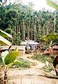 Sylhet village.jpg