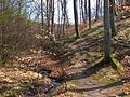Szokolya, 2624 Hungary - panoramio - Kaszás Tibor (5).jpg