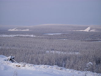 The taiga in the river valley near Verkhoyansk, Russia, at 67degN, experiences the coldest winter temperatures in the northern hemisphere, but the extreme continentality of the climate gives an average daily high of 22 degC (72 degF) in July. Talkessel von Werchojansk.JPG
