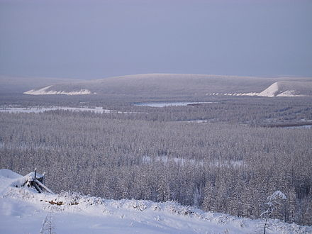 Siberian taiga in the river valley near Verkhoyansk. The lowest temperature recorded there was -68degC (-90degF). Talkessel von Werchojansk.JPG