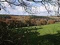 Tamar valley from below Northcott - geograph.org.uk - 609740.jpg