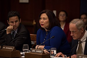 Tammy Duckworth - during Senate Democrat's Climate Committee meeting.jpg