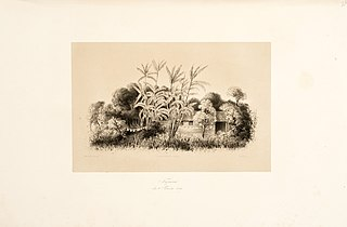 Tapará den 30' November 1842