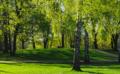 Tarja Halosen puisto Tarja Halonens park Helsinki Helsingfors 2015 5 15.png