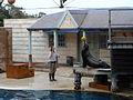Taronga Zoo (6182489488).jpg