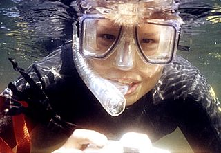 Diving mask Watertight air-filled face cover with view-ports for improving underwater vision