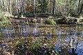 Teich im Schopenhauer Wald Neubiberg-4.jpg