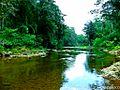 Territorio indígena, Mayagna Sauni Bas, en La Reserva de la Biosfera BOSAWAS. (Rio Uly). Margen isquierda. Siuna, RAAN, Nic. - panoramio.jpg