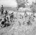 The British Army in Italy 1944 NA16966.jpg