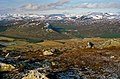 The Cairngorms - geograph.org.uk - 1766459.jpg