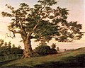 The Charter Oak Charles De Wolf Brownell 1857.jpeg