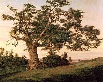 Charter Oak - The Charter Oak, oil on canvas, Charles De Wolf Brownell, 1857. Wadsworth Atheneum