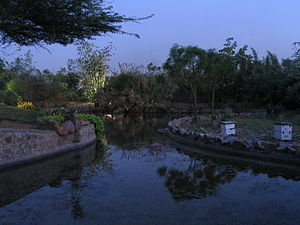 Lake in The Garden of Five Senses, ,