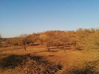 Kathiawar-Gir dry deciduous forests