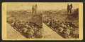 The dead in a ditch at Antietam, from Robert N. Dennis collection of stereoscopic views.png