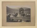 The start of the race, Kelowna, British Columbia (HS85-10-21808) original.tif