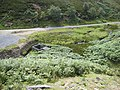 The valley of Sharnberry Gill - geograph.org.uk - 510892.jpg