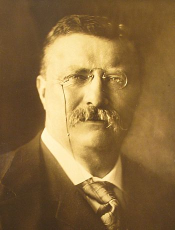 English: Theodore Roosevelt in office as Presi...