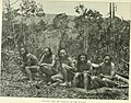 Through Central Borneo; an account of two years' travel in the land of the head-hunters between the years 1913 and 1917 (1920) (14773630251).jpg