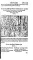 Thurnierbuch (Rüxner) 175.png