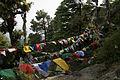 Tibetan Prayer Flags (2485559466).jpg