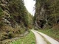 Tiesňavy v Dedošovej doline - panoramio.jpg