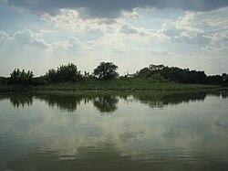 Tisza-tó.jpg