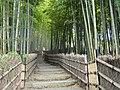 Tomb of Suminokura Soan - Adashino-nenbutsuji - DSC06327.JPG
