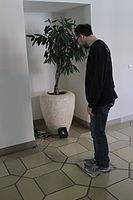 Tonspuren 2014 Sprechender Stein (02).jpg
