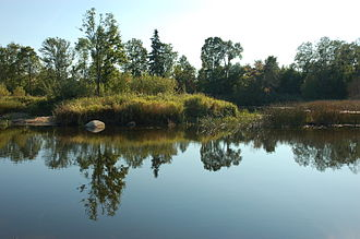 Sacred grove - Sacred Grove Island, Estonia