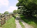 Track, Evattsike - geograph.org.uk - 183514.jpg