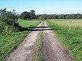 Track Crossing The Staffordshire Way, Teddesley - geograph.org.uk - 271692.jpg