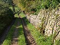 Track and wall near Dartington - geograph.org.uk - 1010393.jpg