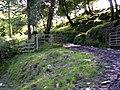 Track near Nantyfen farm - geograph.org.uk - 1432139.jpg