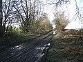 Track near Shepherdswhim - geograph.org.uk - 679573.jpg