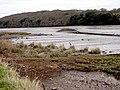 Tresillian River Estuary at Low Tide - geograph.org.uk - 586066.jpg