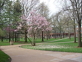 Truman State University - The quad in Spring