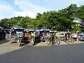 Tuk-tuks in Luang Prabang.jpg