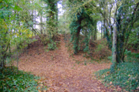 Tumulus Plorec sur Arguenon 2.png