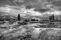 Tuolumne Meadows bw.jpg