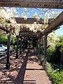 Turnbull Wine Cellars, Oakville, California, USA (7680521334).jpg